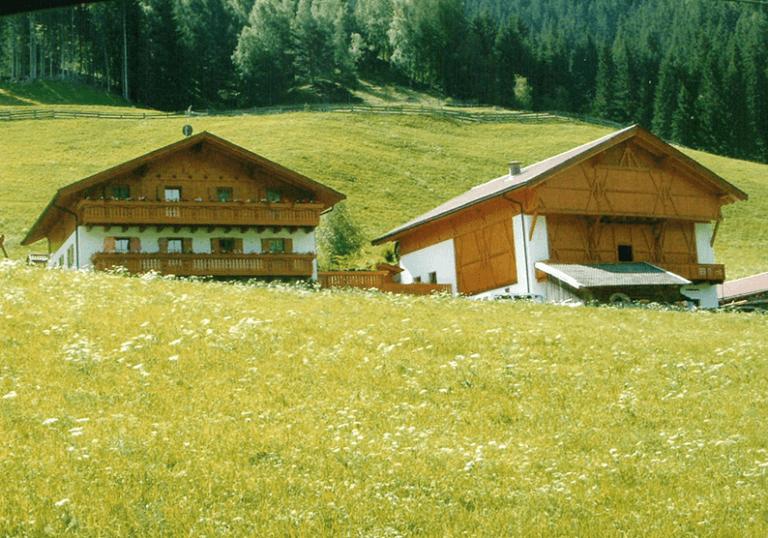 Costruzioni-abitative-in-legno