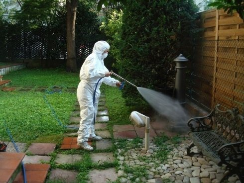 disinfestazione esterna per zanzare