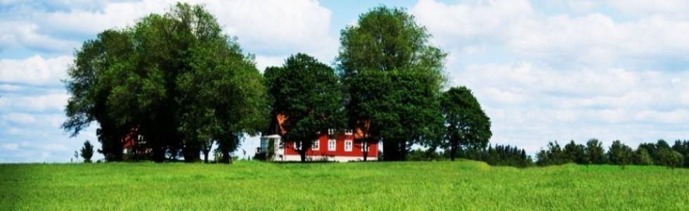 prato verde con casa