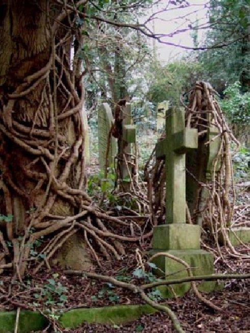 pulizia e sanificazione cappelle cimiteriali
