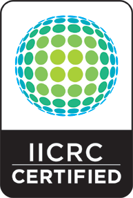 showcase carpet iicrc certified