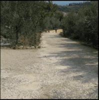 manutenzione strade pubbliche