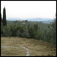 taglio erba e costruzione giardini