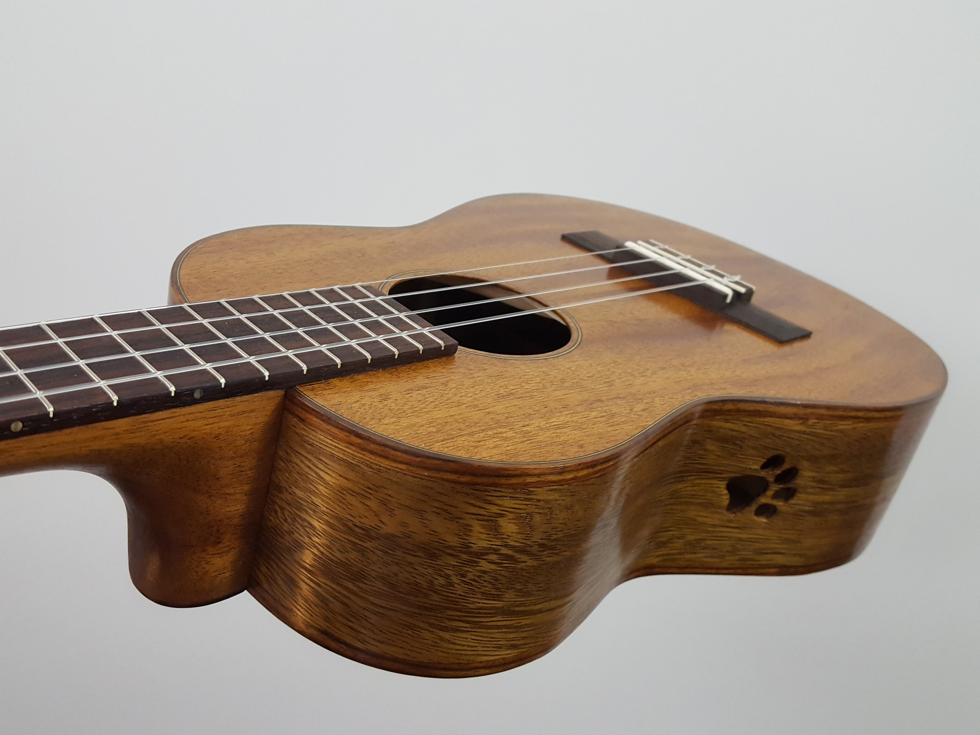 Ukulele with sound port