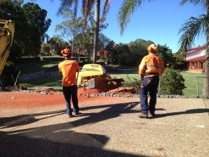 Our stump removal experts in Brisbane Southside