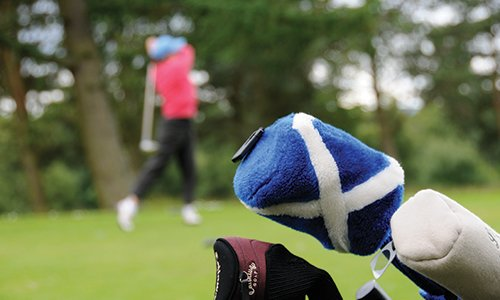 Golf player equipment for playing golf