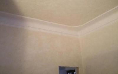Spugnatura pareti Prato