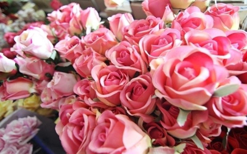 Rose finte