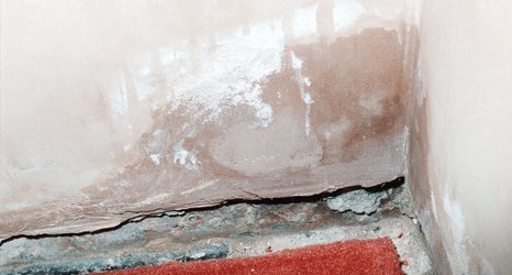 damp and cracked wall