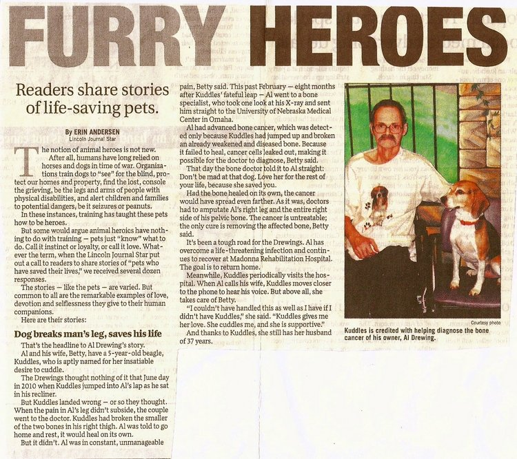 News article clip