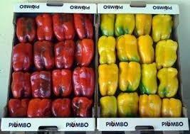 peperoni gialli e rossi