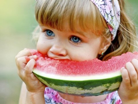 Commercializzazione frutta e verdura
