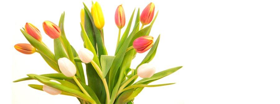 fiori per il funerale