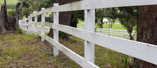 Quality fence built by premiere fence builders in Randleman