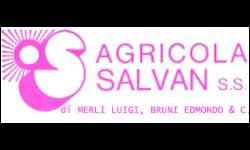 logo Agricola Salvan