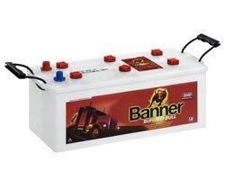BANNER – BUFFALO BULL