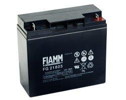 FIAMM – FG21803