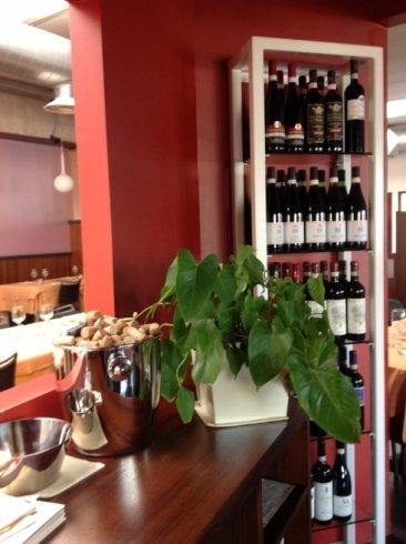 un bancone con una pianta e i vini negli scaffali