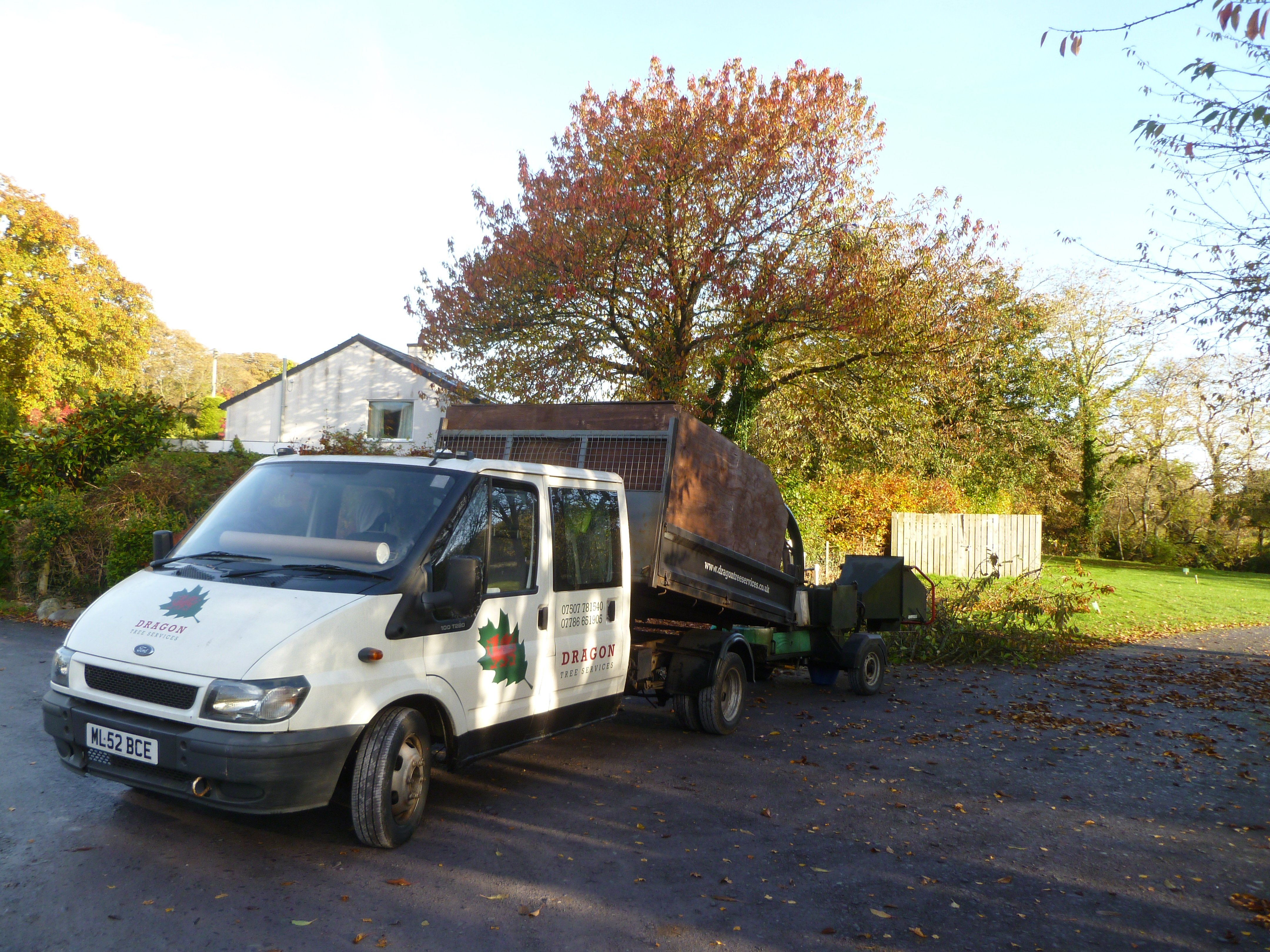 Setting up before beginning the Cherry Tree Crown Reduction. The Dragon Tree Services van now complete with go faster stripes along the sills.