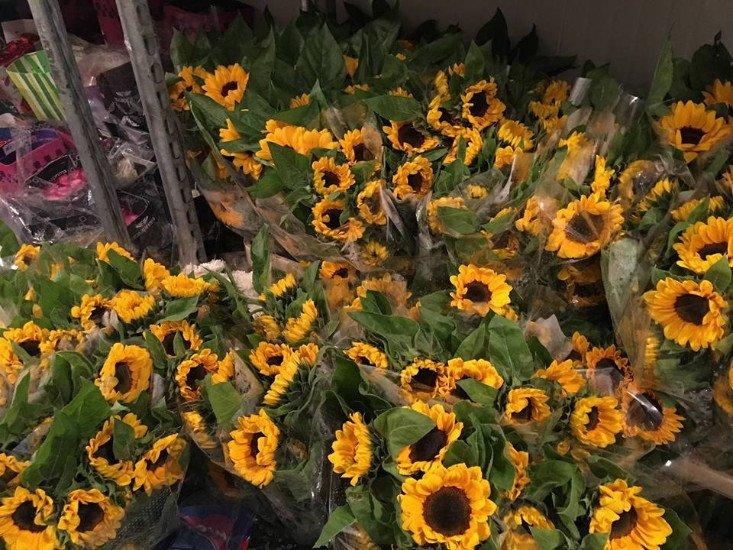 Dei bouquet di girasoli