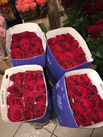 delle rose rosse dentro a 4 scatole blu