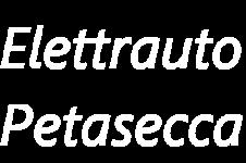 Elettrauto Petasecca