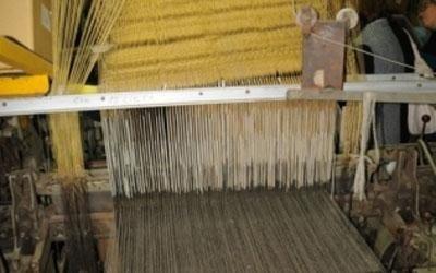 produzione lino