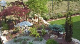 aiuole per giardini, giardinieri esperti, assistenza giardini