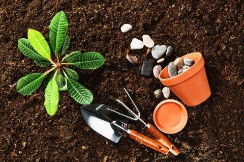 vasi e accessori giardinaggio