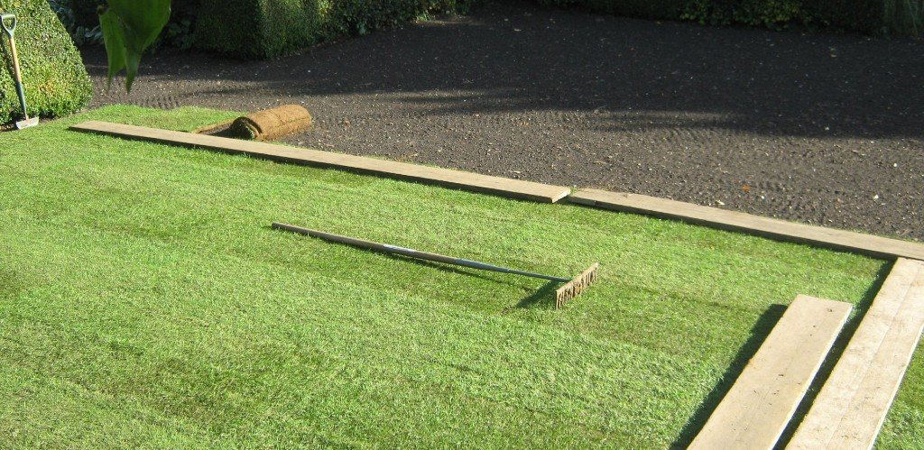 Expert Lawn Turf From A Steven Turf Supplies Norwich