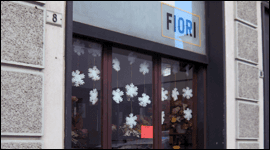 negozio di piante