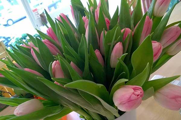 Un vaso di tulipani rosa con delle foglie