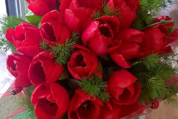 Una mano con un bouquet di tulipani rossi