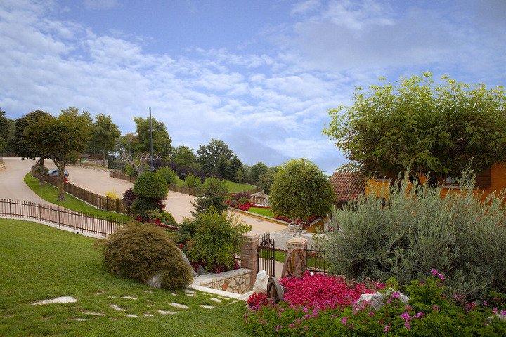 giardino con fiori e alberi