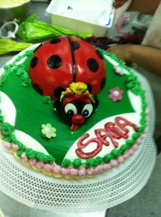 torta di compleanno coccinella