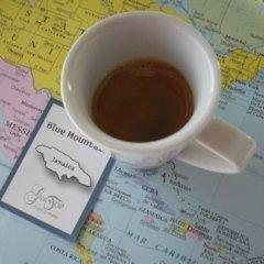 caffè, coffe, caffè monorigine, jamaica blue mountain, gustotop rossetto