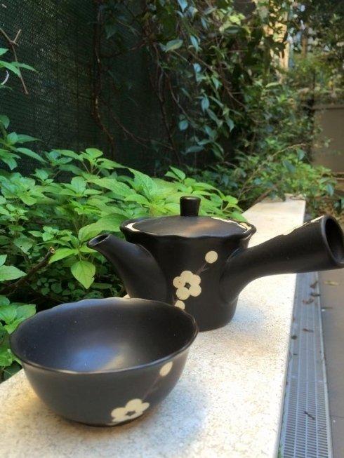 un tè giapponese nel giardino di Fiorditè