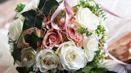 composizione floreale, rosa bianca, fiori colorati