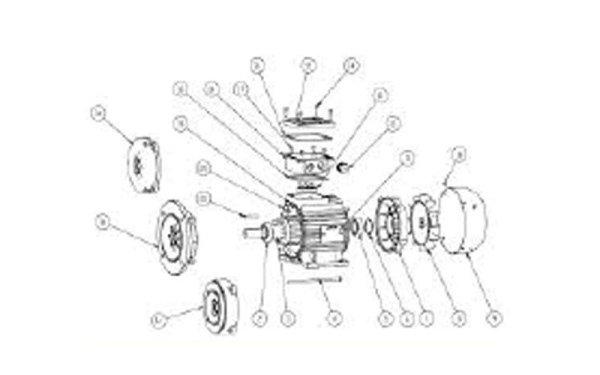 Motori Asincroni TRIFASE