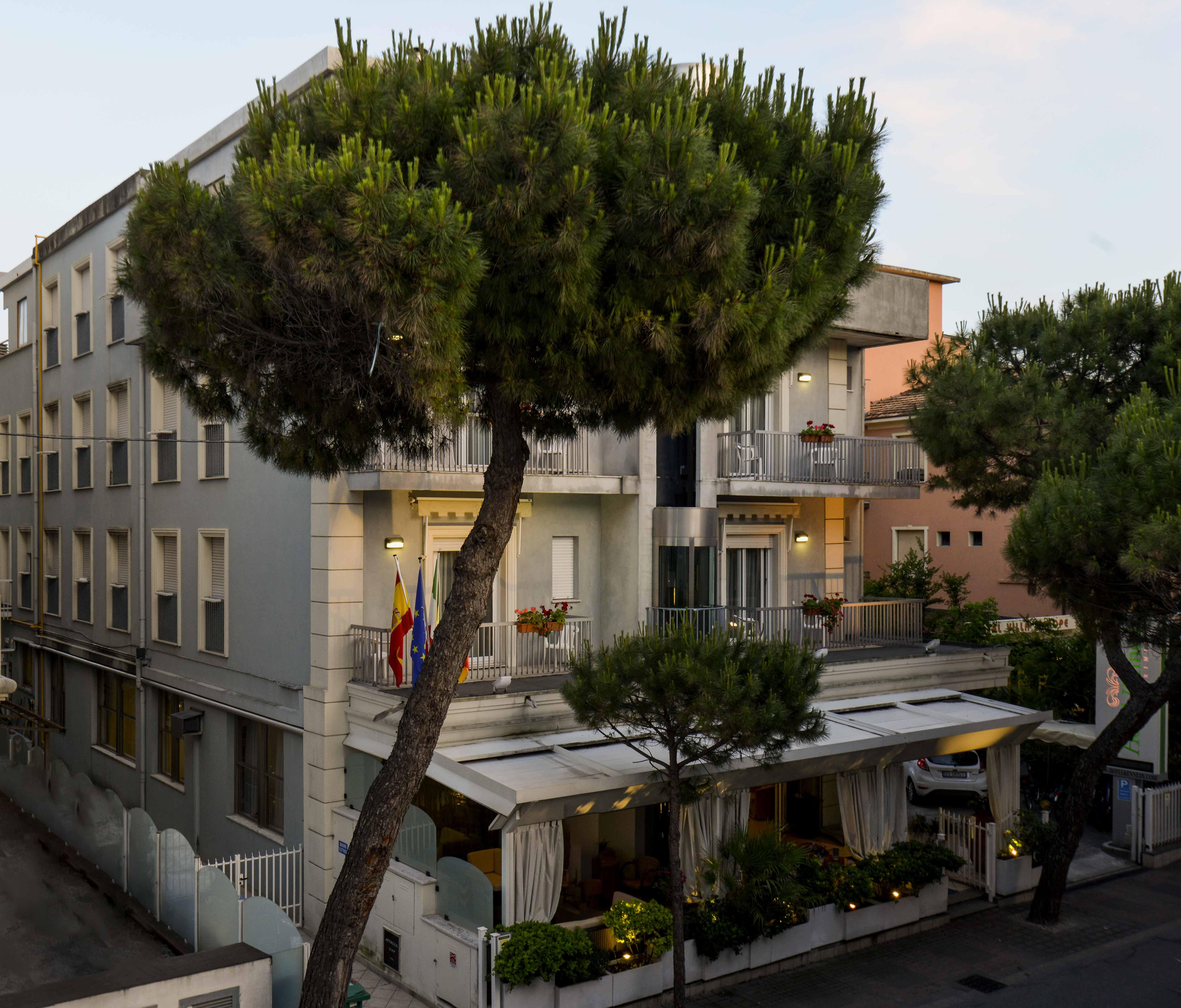 albero di fronte a un hotel