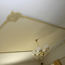 ornamental ceiling plaster
