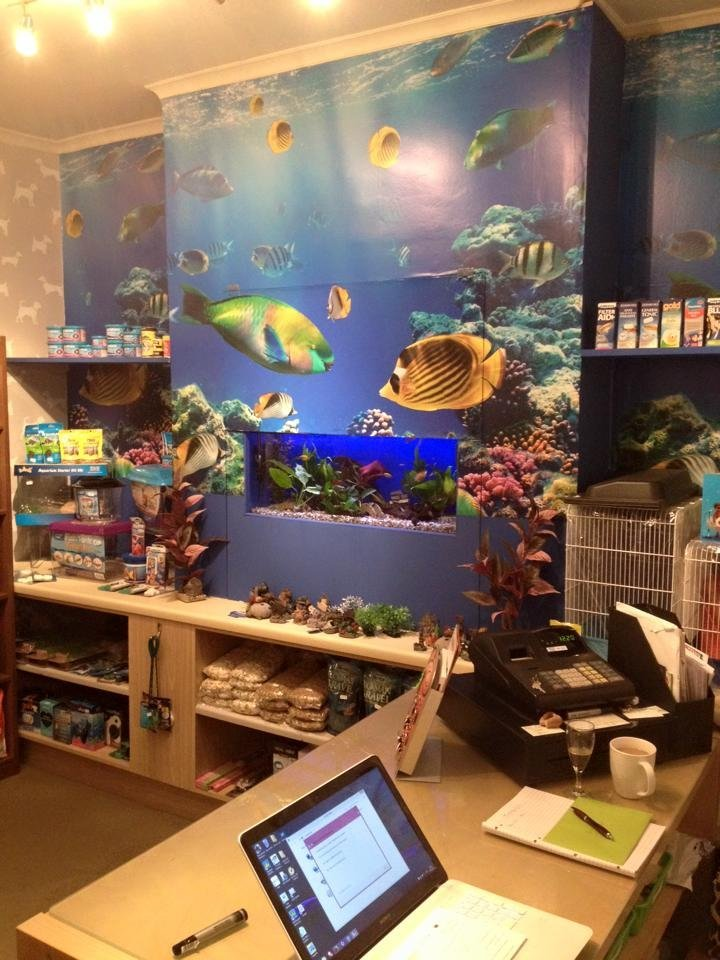 fish and aquarium supplies