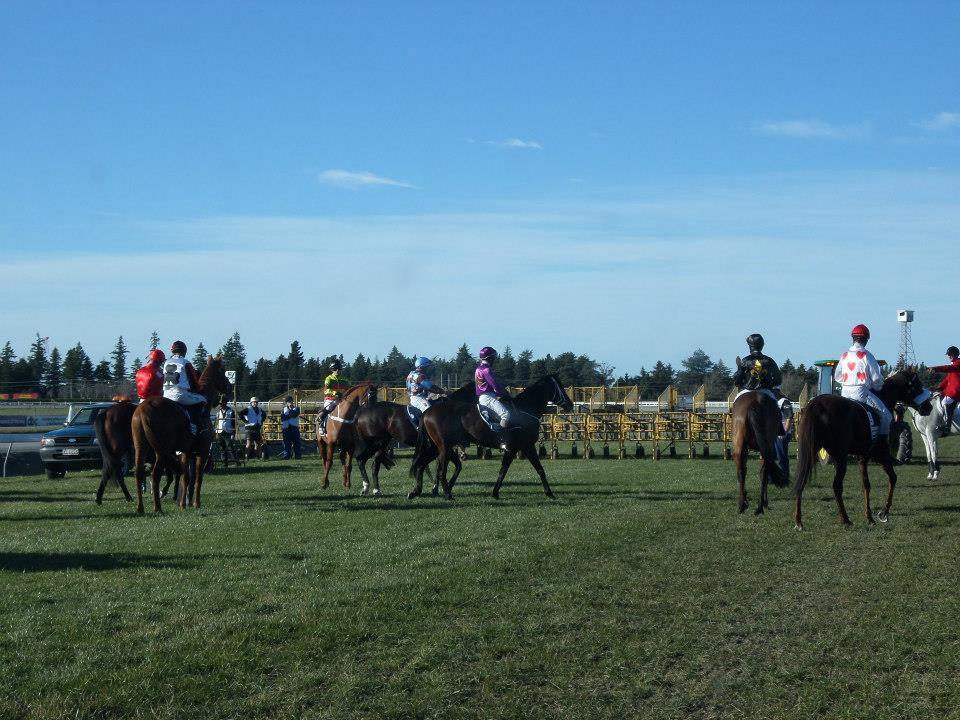 Riccarton Race course
