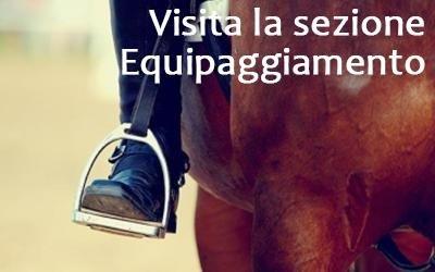 equipaggiamento per equitazione