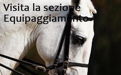 equipaggiamento per cavalli