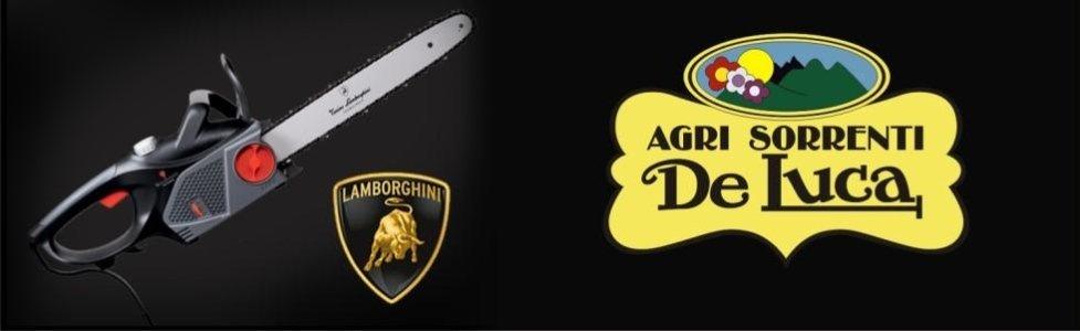 Agri Sorrenti Motoseghe Lamborghini