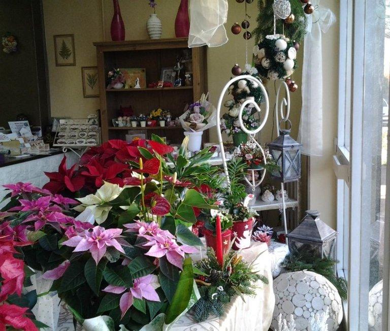 vetrina negozio fiori
