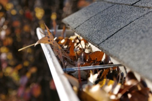 gutter cleaning College Station, TX