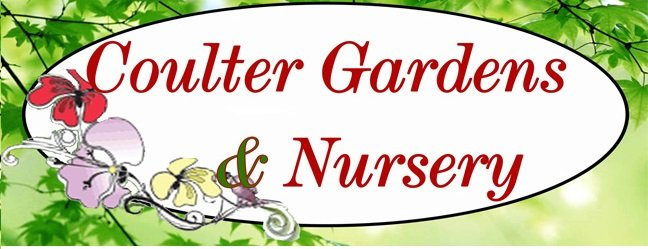 Local Garden Experts Amarillo, TX
