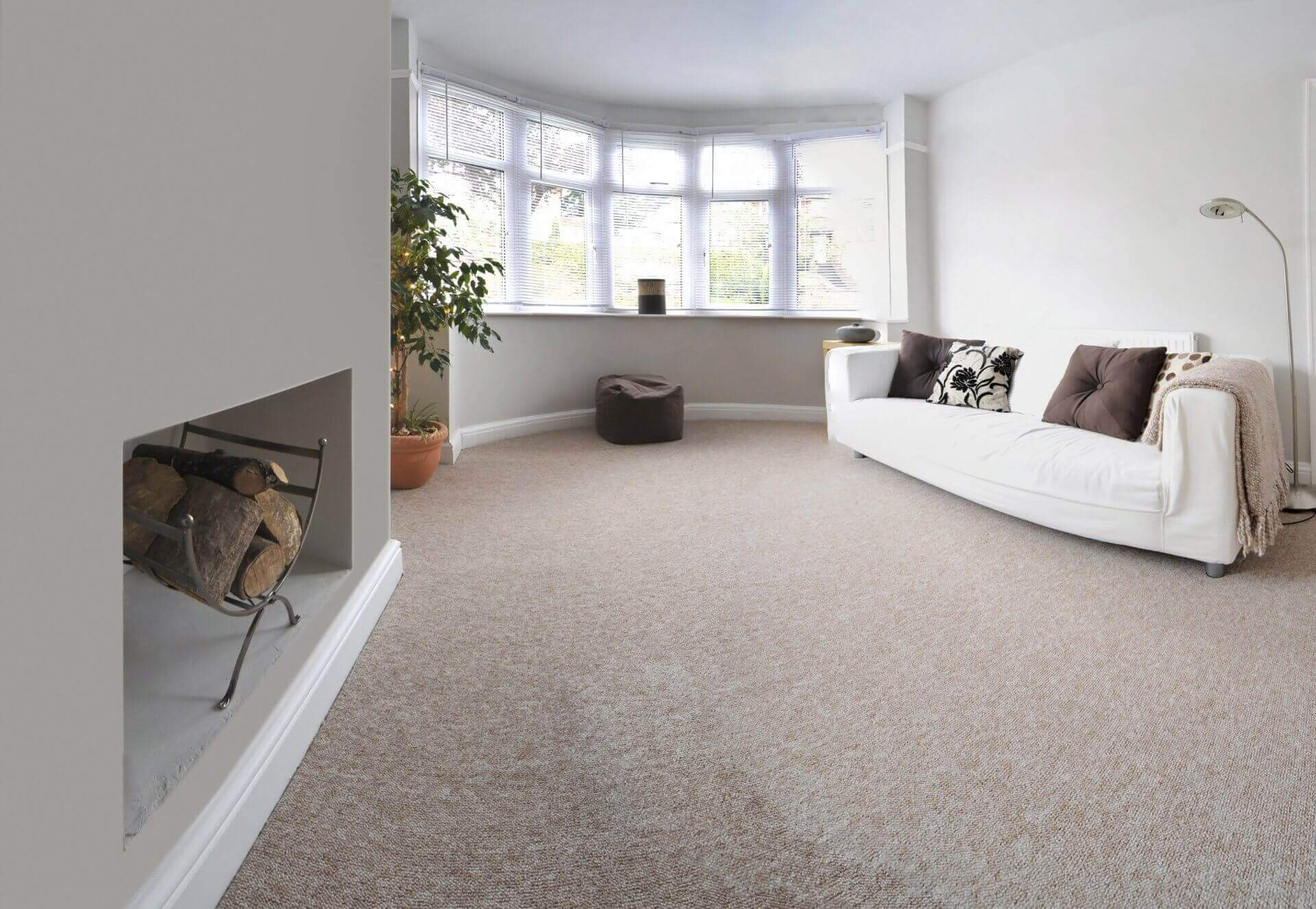 living room with large window and cream carpet